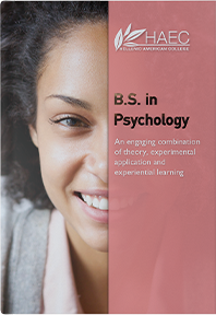 The Bachelor of Science in Psychology (BSPsy) Flyer